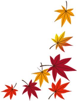Fallen leaves 14