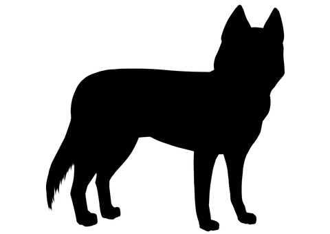 Husky dog silhouette