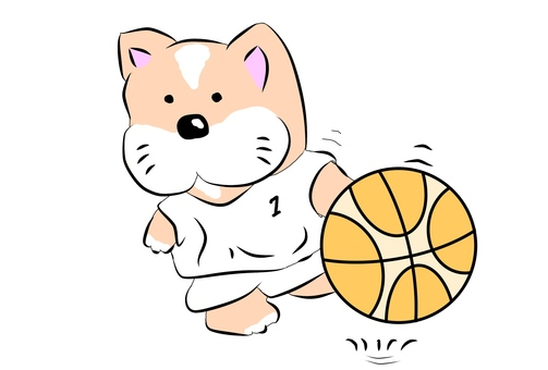 Basket dog dribble