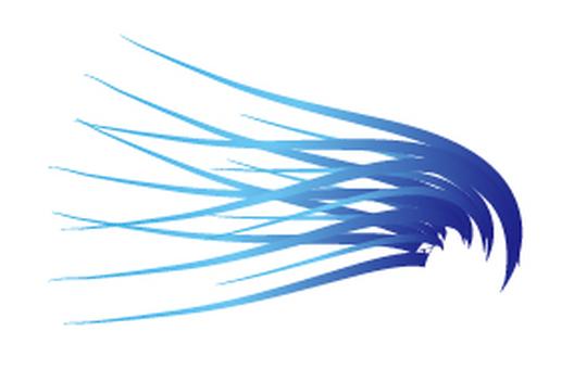 Wing 02_01