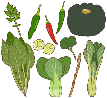 Vegetables (green yellow vegetables) 2/4