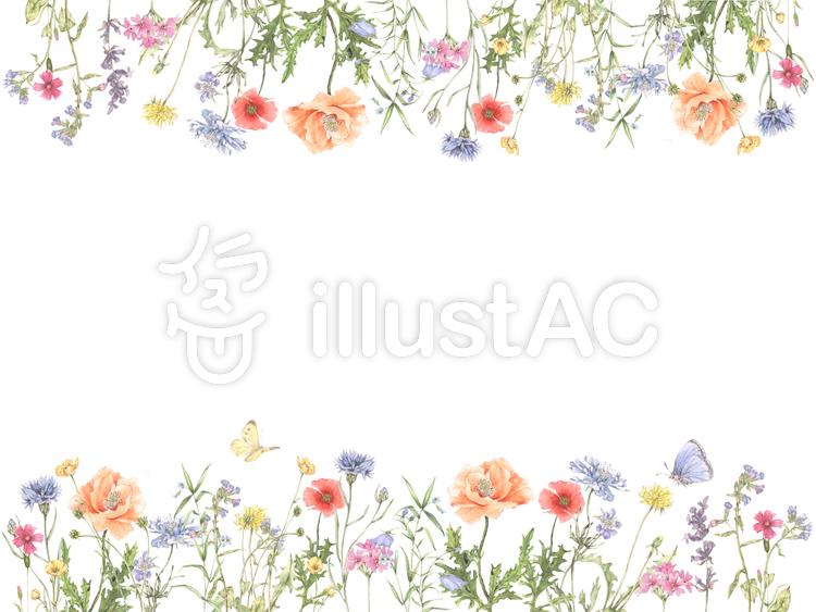 花枠花枠224ワイルドフラワーの花枠イラスト No 834547無料