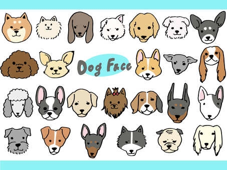 Various dog's face set
