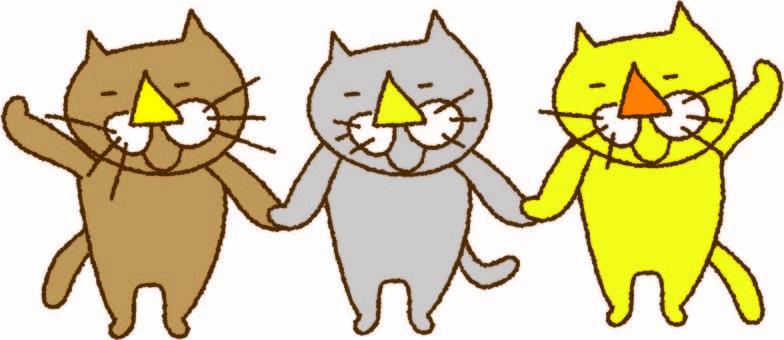 고양이 3 트리오