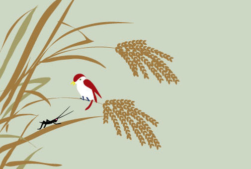 Japanese style illustrations of autumn rice and sparrow
