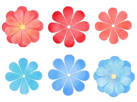 Red flower, blue flower