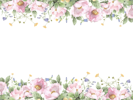 Flower frame 193 - Pink roses and butter cup