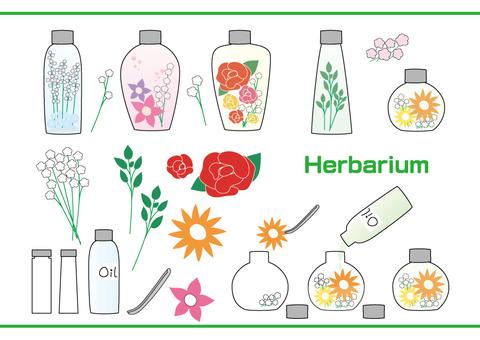 식물 표본 상자