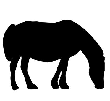 Horse silhouette 2
