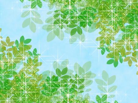 Frame plant