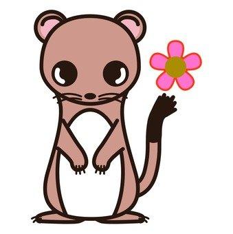 Brown okojo and flowers