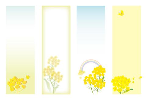 Rapeseed flowers strip
