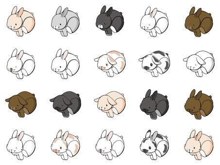 Rice rabbits variety