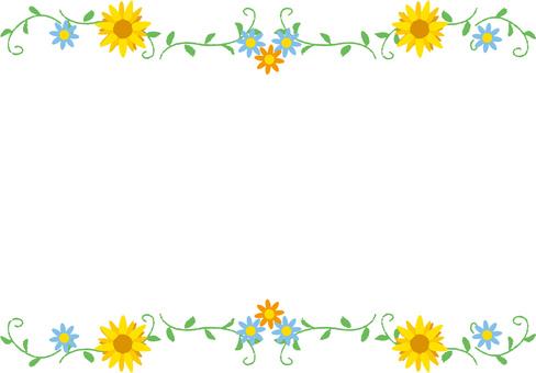 Sunflower _ frame