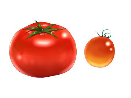 Tomato / cherry tomato