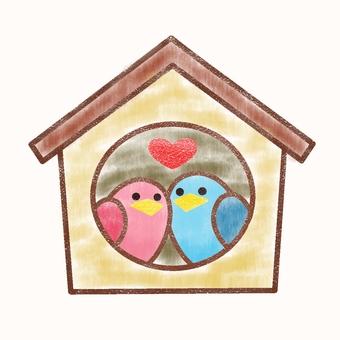 Nest box color 2