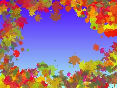 秋天的樹葉和天空12