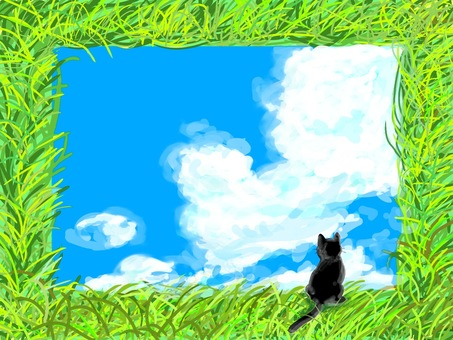 Wildflower Frame (Black Cat)