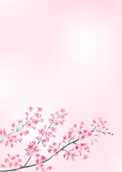Cherry background A4 size vertical design