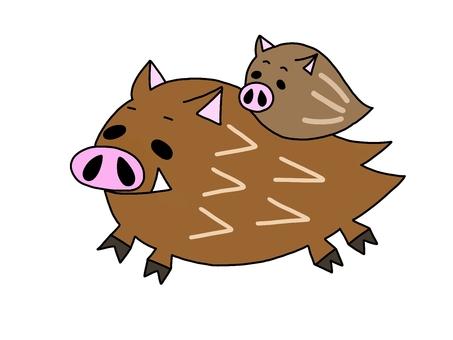 Boar broth