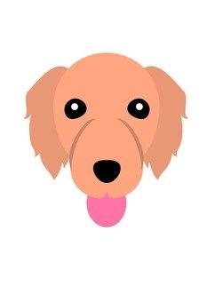 Dog 36