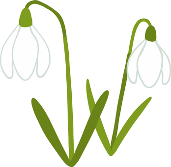 A cute hand-painted snowdrop