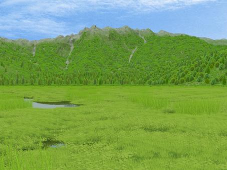swamp (mountain)