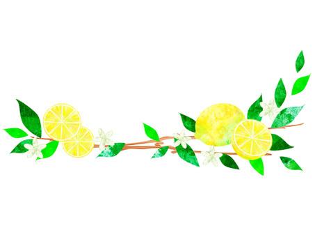 레몬 _ 라인