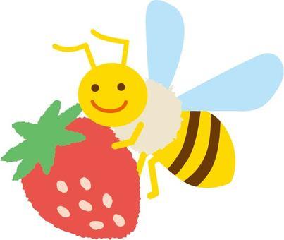 Honey bee and strawberries