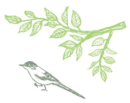 Bird_onaga