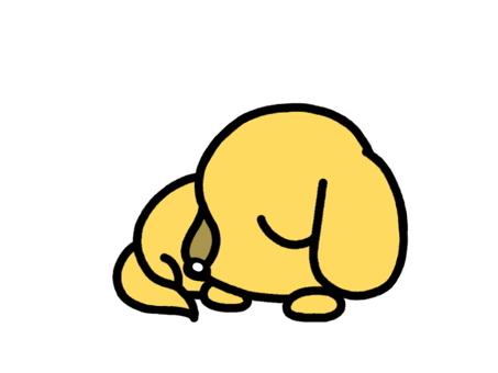 Sleeping dog yellow