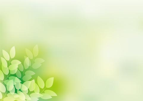 新鲜绿色23