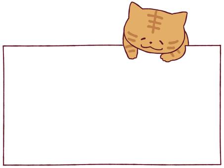 Cat frame - tea tiger