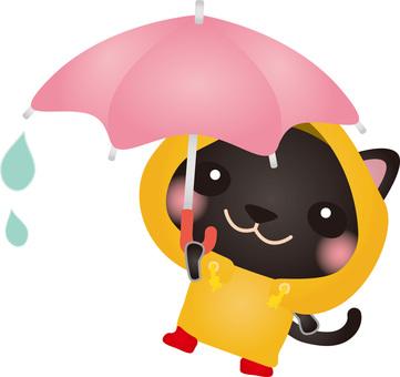 Rainy day black cat