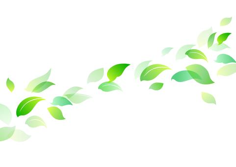 Fresh green material 12
