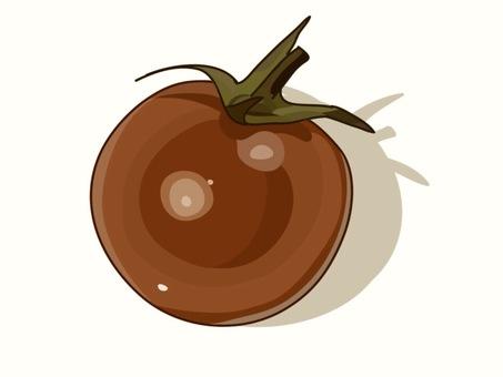 Fresh Petit Tomato ② Sepia
