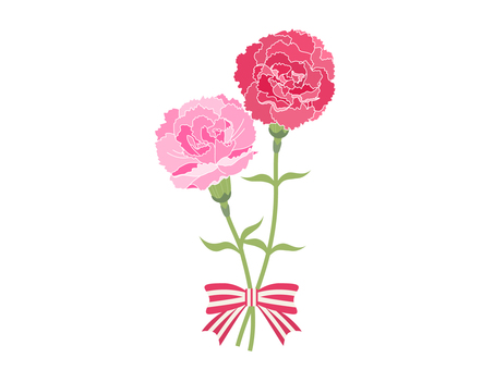 【Mother's Day】 red and pink carnation