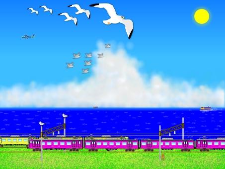 Seagulls added. (2353)