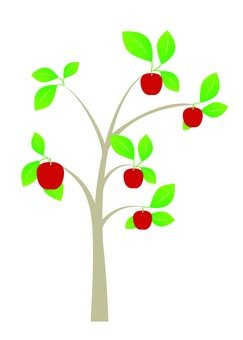 사과 나무