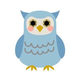 Owl, blue