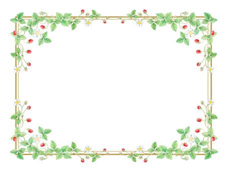 Wild strawberry frame ★ 0026-W