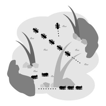 Ant (monochrome)