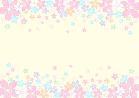 Sakura _ up and down _ pastel_ yellow background 1867