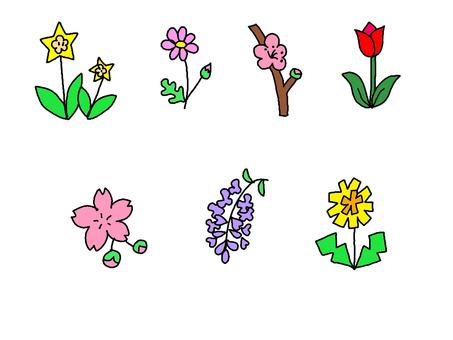 Flower ①