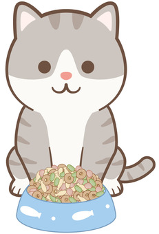 Cat-chan rice 01