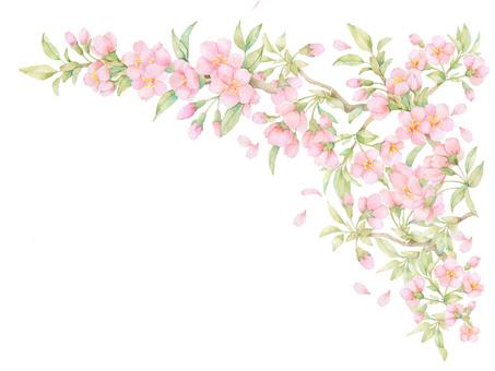 Sakura Spring Romantic 03 Border Decoration ★ 0012-S