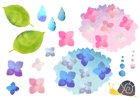 Watercolor-like hydrangea illustration
