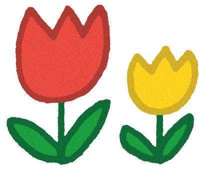 Tulip (Aka and Kiro)