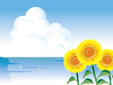 隧道云,海和向日葵