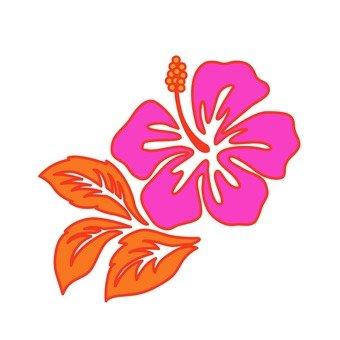 Hawaiian plant 16
